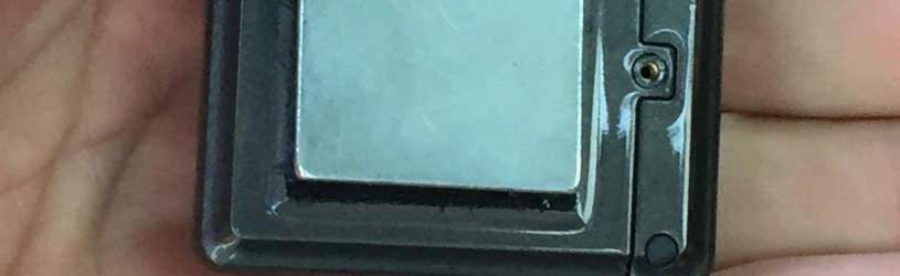 GSM - Wanze mit unbegrenzter Reichweite.